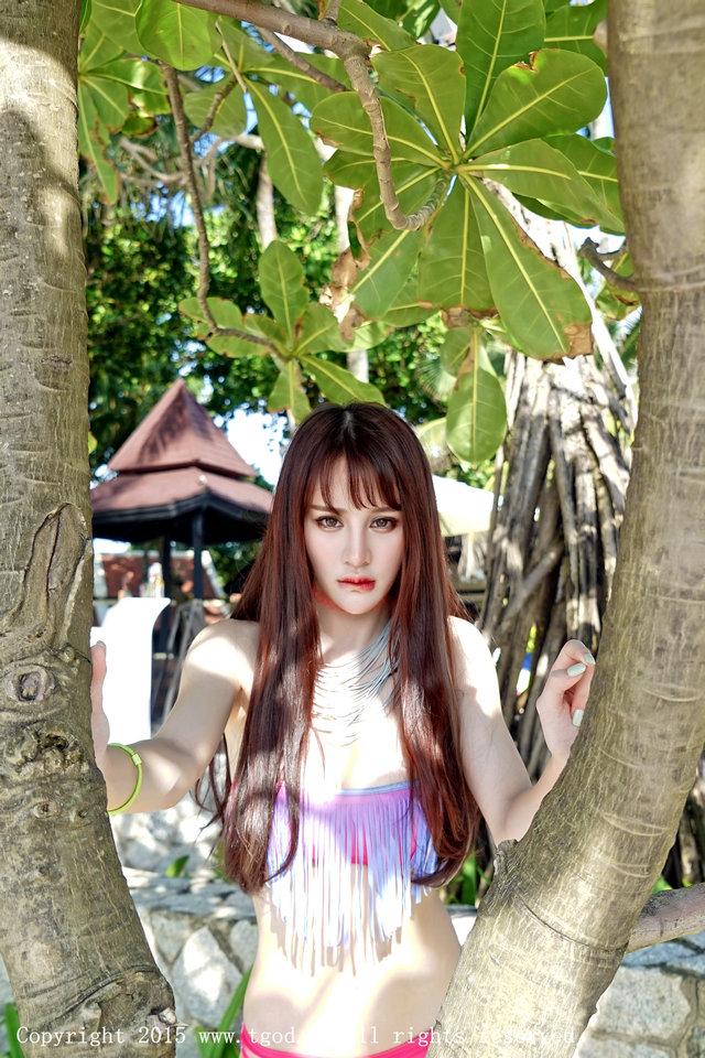 Cheryl青树
